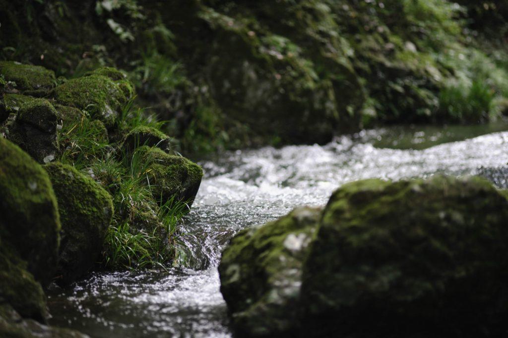 清らかな川の流れ